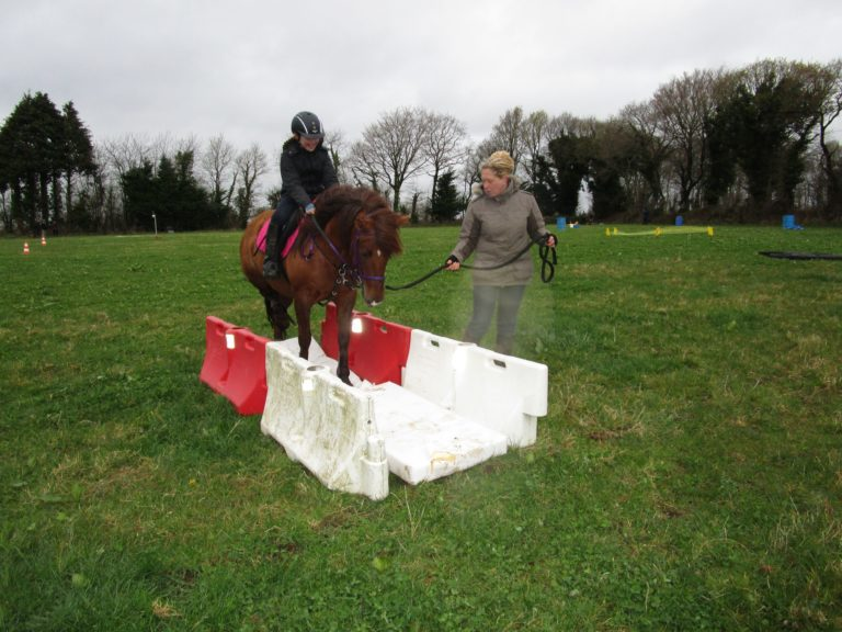 equigames 023
